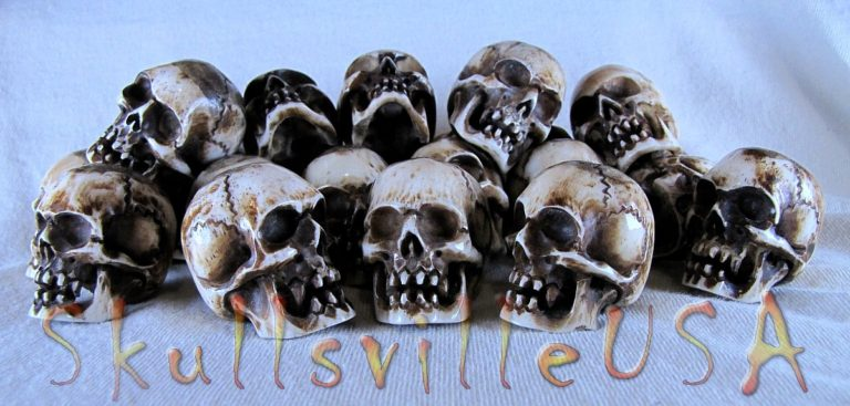 water buffalo bone vampire skull beads